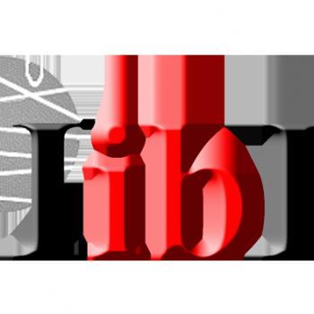 IIBBlogoBOLA_v2